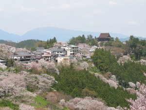 吉野山 - 吉野町
