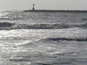 大原海岸 - いすみ市