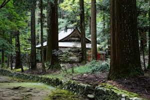 高山寺 - 右京区