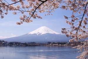 河口湖と富士山 - 山梨県