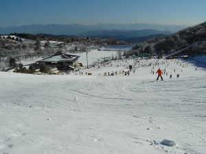 茶臼山高原スキー場 - 豊根村