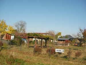 大柳運動公園 - 美里町