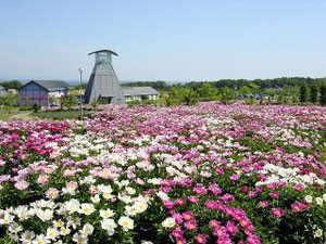愛宕山公園 - 色麻町