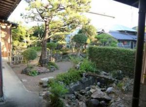 日本庭園といえるような庭です