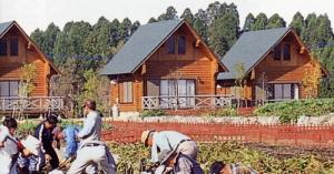 大分県 日田市 農業体験施設 クラインガルテン