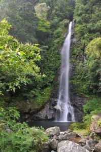 大樽の滝 - 越知町